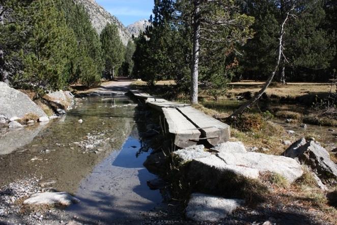 Puentes de troncos para continuar la ruta. Aigüestortes. LeleSorribas2013