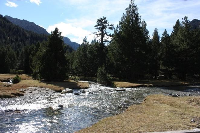El agua corre a su antojo por todo el parque. No sigue líneas rectas. Aigüestortes. LeleSorribas2013